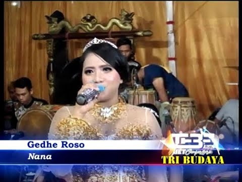 Gedhe Roso Cover by NANA Campursari TEBE Tri Budaya