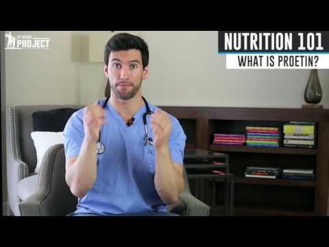Nutrition 101 Series – What is Protein?