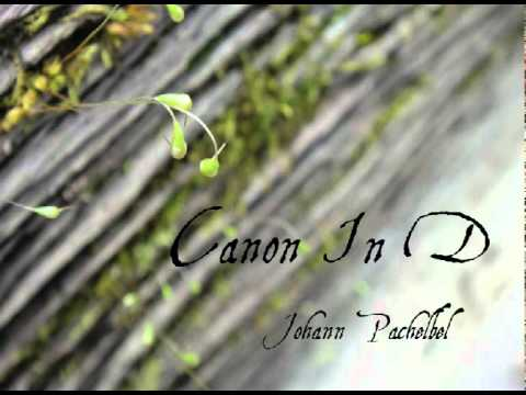 Canon In D (Piano Version)