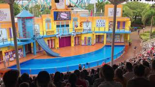 Sea Lion High show at Sea World
