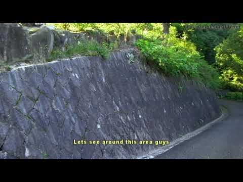 What a beautiful garden in Hiroshima   Japan