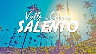 Conociendo el Valle del Cocora y Salento | VLOGDIAS de Ruta 2