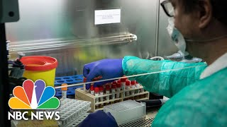 Coronavirus Panic Grows As Shortage Of Test Kits Impacts Everyday Life | NBC Nightly News