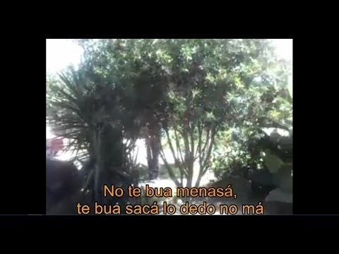 VIDEO: Te voy a sacar los dedos, la fuerte amenaza de un policía