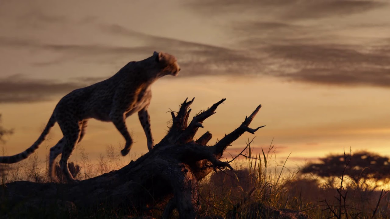 Disney's The Lion King | Long Live the King - YouTube