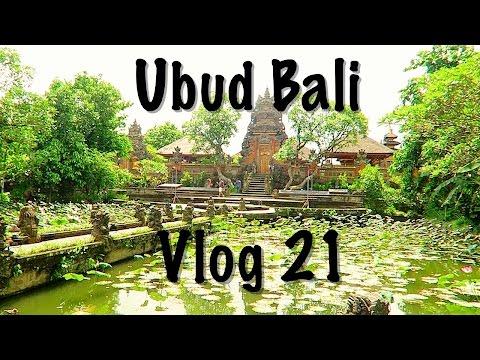 Bali - Moving to Ubud - Vlog 21