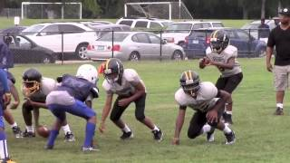 Malakai Anthony - Lamond Riggs Steelers 2013 Highlights