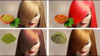 Dites adieu pour toujours aux cheveux gris avec l'une de ces plantes naturelles Santé&Divertissement