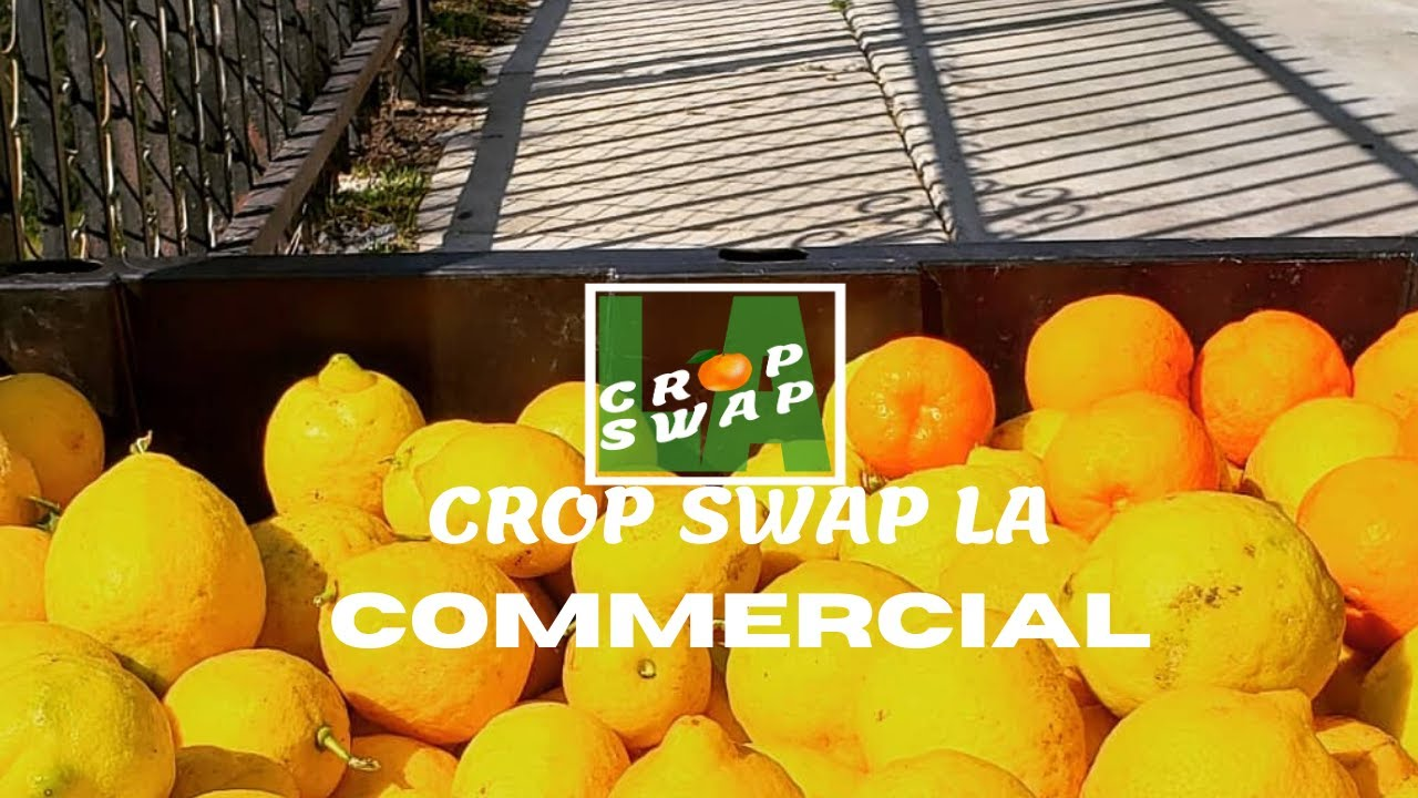 Crop Swap LA Commercial