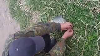 Рыбалка.Ловля карпа на одном из водоемов Белоруссии Брестской области.