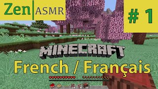 zen asmr   minecraft   french franais canada   attack of the b team   1