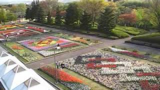Gunma Flower Park 2009