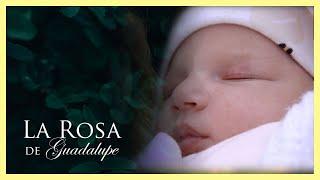 La Rosa de Guadalupe: Agripina se roba a la hija de sus patrones   Amor en tiempo de cuarentena