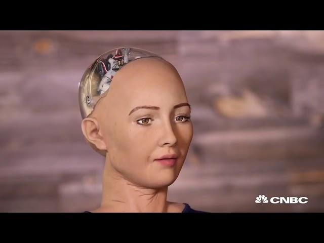 ROBO SOPHIA Dominar a raça humana a primeira ciber piada de mau gosto
