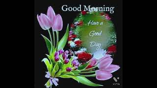 Good Morning Pictures शुभ सकाळ फोटो