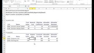 Interpreting Solver Sensitivity Report