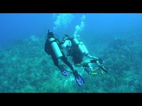 Grand Cayman | The Scuba Shop - Grand Cayman 2015