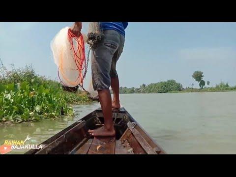 Download menjala ikan di sungai,pakai perahu Hasilnya...!!! lumayan...