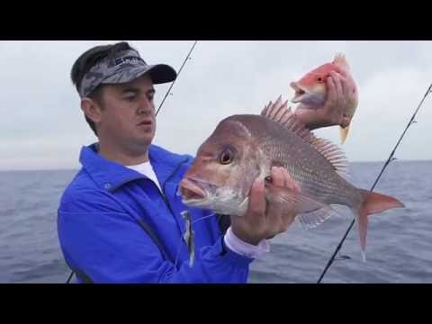 Fishing Journeys Ep13 - Offshore Kings And Deepwater Reef Fishing