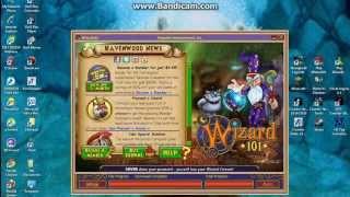 Wizard101 Pet Training Glitch