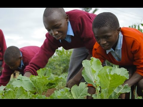Kenya's Ecological Farmers: The Manor House Cultural Centre