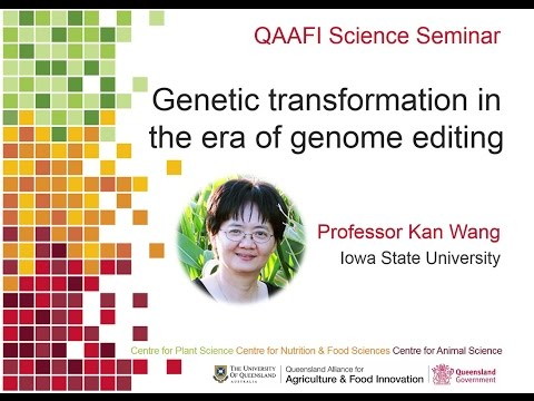 Genetic transformation in the era of GENOME EDITING