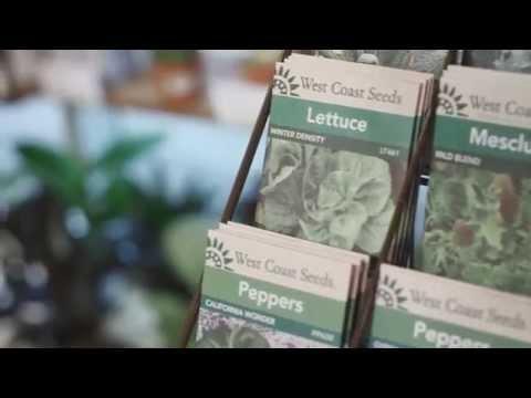 Greens Organic + Natural Market | Vancouver, BC
