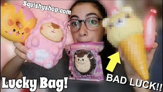 $40 LUCKY BAGS!!! squishy shop.com package BAD LUCK!