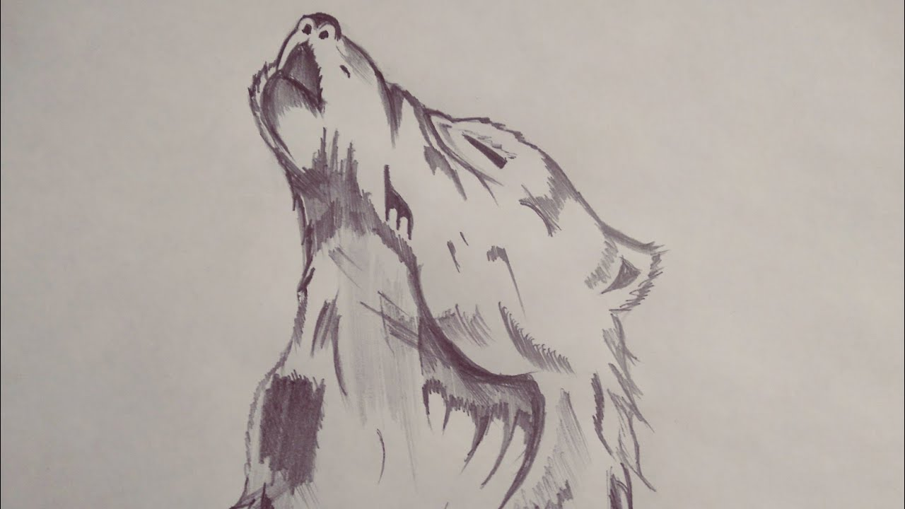 Картинка волка рисунок пошагово на заборе