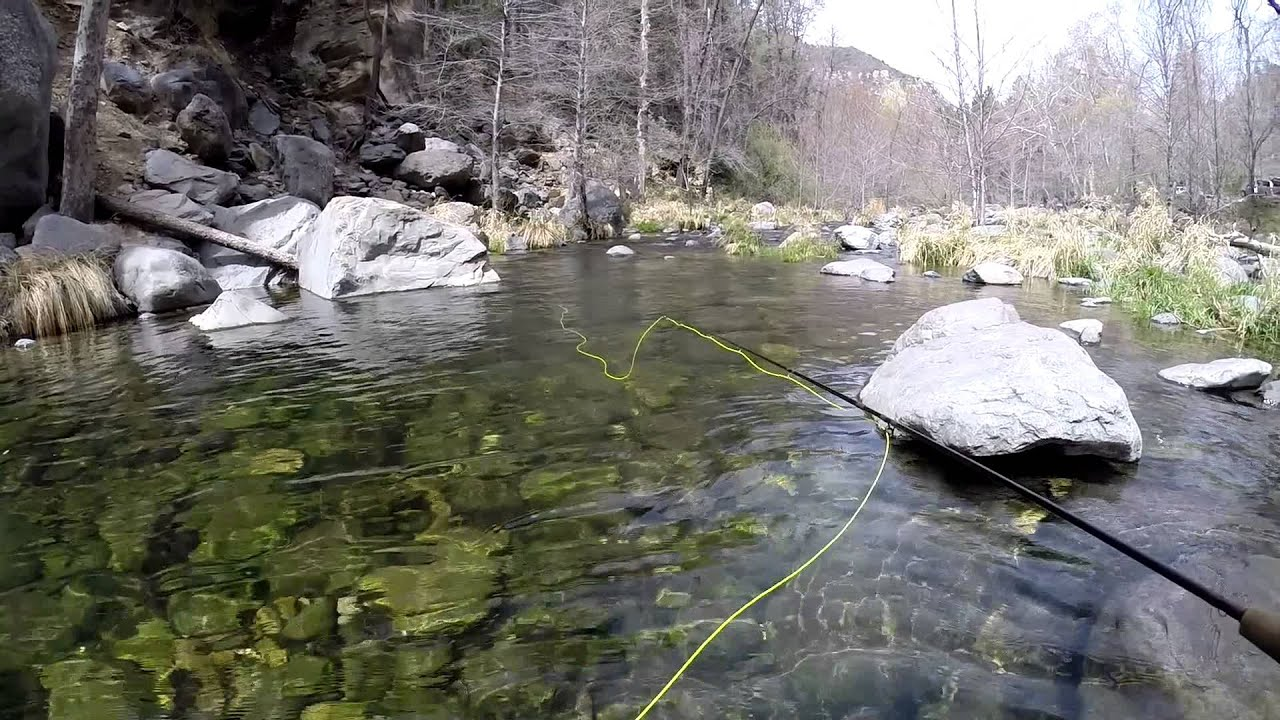 Fishing in oak creek canyon youtube for Fishing report az