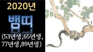 2020년 뱀띠 신년운세(53년생,65년생,77년생,89년생) 경자년황금뱀띠,푸른뱀띠,흰뱀띠,검은뱀띠,붉은뱀…