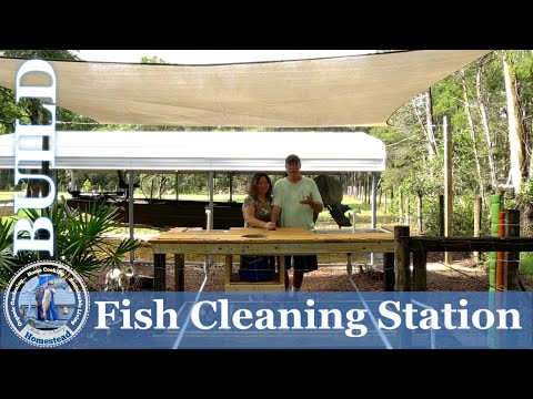 Building Our Fish Cleaning Station
