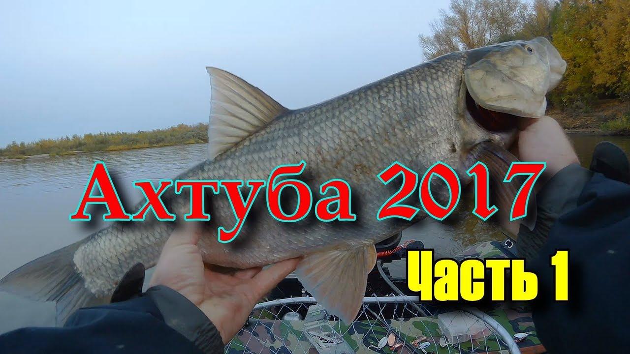 Смотреть видео Рыбалка весной на Ахтубе спиннингом (HD) на vidos.cc бесплатно