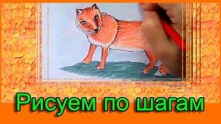 Рисуем животных поэтапно/ Как нарисовать лису по клеточкам