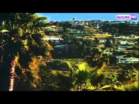 برنامج وثائقي   الناجون : الحلقة 3 HD