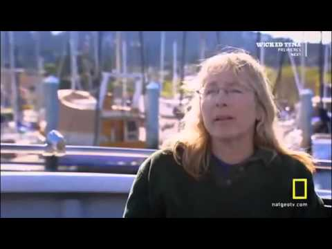 Killer Whale Vs Great White Shark National Geographic Documentary Discovery HD