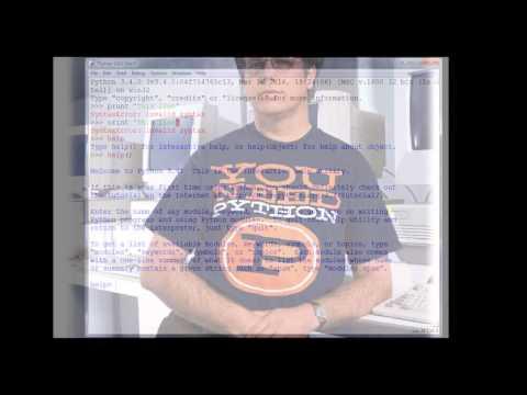 The average Python programmer