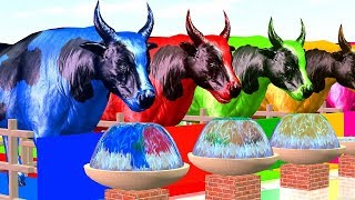 Learn Colors Bulls Eat Fruits Animals Change Colors For Children - Cartoon For Kidzee Rhymes