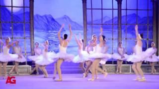 بالفيديو| نيللي كريم تُبدع في رقصة بحيرة البجع