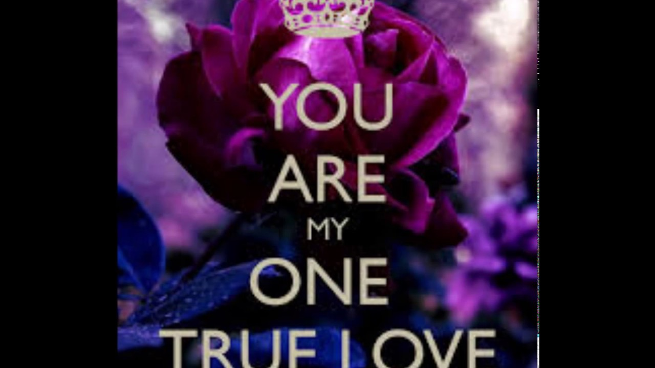 My True True Love - The Senti-Mentals
