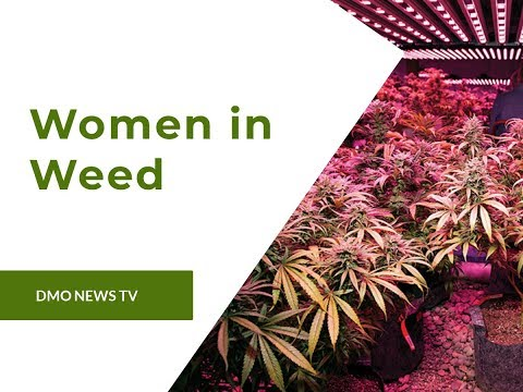 Women in Weed: How Females are Leading the Cannabis Industry