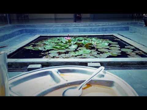 The Beautiful Art of Living Pune triveni Ashram