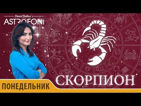 Гороскоп на 2017 год Скорпион: годовой прогноз для знака