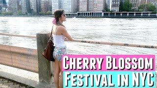 CHERRY BLOSSOM FESTIVAL ROOSEVELT ISLAND IN NYC