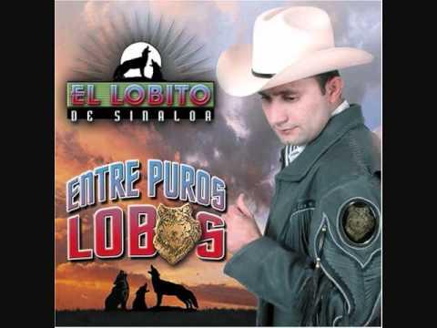 Mi Viejita Linda - El Lobito De Sinaloa