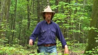 видео Сельское хозяйство в зоне умеренного климата.