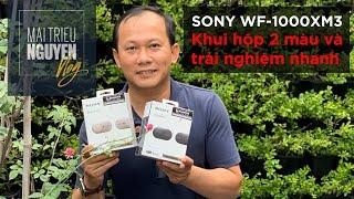 True Wireless Sony WF-1000XM3: Khui hộp 2 màu và trải nghiệm nhanh