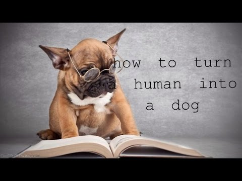 How to Turn a Human Into a Dog