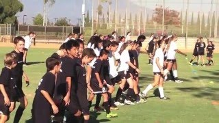 Irvine Slammers SAQ Highlights | Sweat City Athletic Performance Training