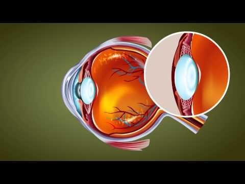Human Eye - Class 10 Tutorial